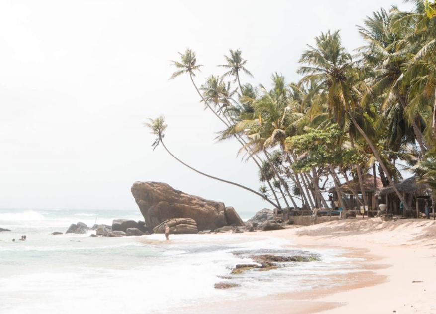Дикий пляж Шри ланка