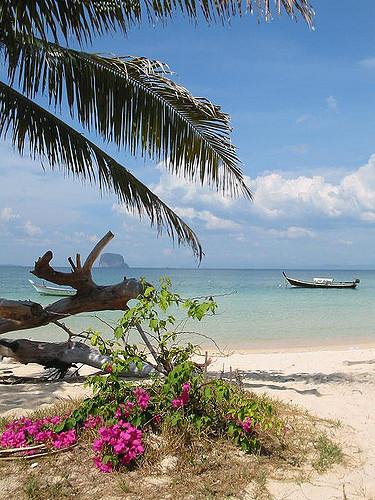 Берег острова Koh Bulon