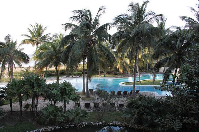 Вид на бассейн из отеля Melia Habana