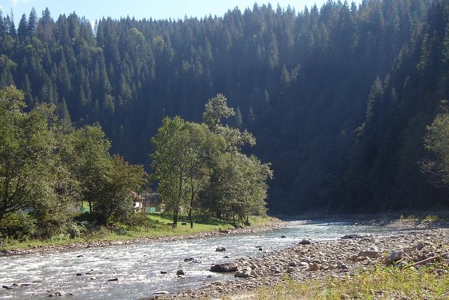 Черный черемош - река
